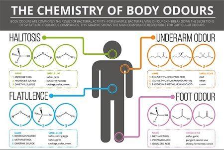 mùi hôi, thối chân, hôi nách, hôi miệng, hợp chất hóa học, vi khuẩn