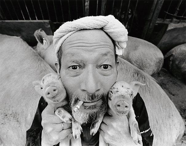 ảnh đẹp, hạnh phúc, nông dân, nuôi lợn, yêu thương