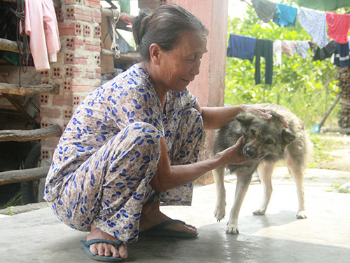 thịt-chó, Nhật-Tân, khoái-khẩu, dân-nhậu, tranh-cãi, bàn-nhậu, mồi-ngon, thú-cưng
