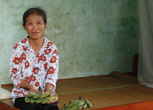 Giữa Thủ đô, ăn chuối xanh cứu đói