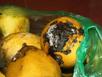 Hoa quả thối nát thành sinh tố tươi mát quán cafe sang