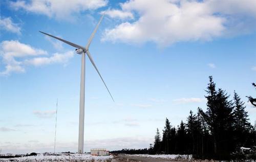 Top các cường quốc điện gió thế giới