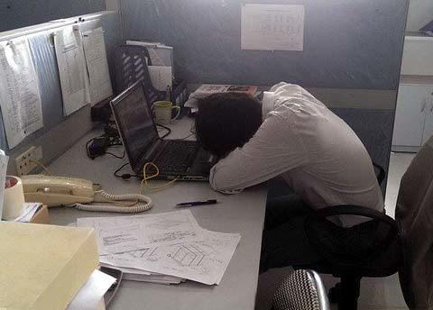 công sở, ngủ trưa, ngủ trưa tại công sở