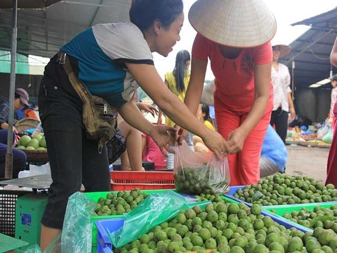 Hà Nội: Chà vỏ sấu, kiểm tiền triệu mỗi ngày
