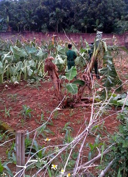Trực thăng rơi ở ngoại thành Hà Nội, 16 người chết