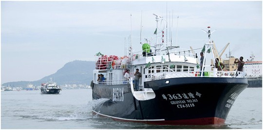 Cận cảnh đội tàu sắp mua của đại gia Sài Gòn