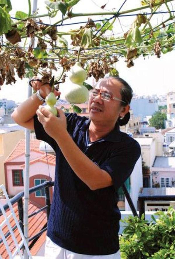 Đại gia thời trang mua đất Phú Mỹ Hưng trồng rau sạch