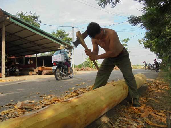 Đại gia đất Bắc âm thầm dựng nhà gỗ chơi riêng
