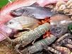 Thủy sản nhiễm độc: vừa ăn vừa sợ