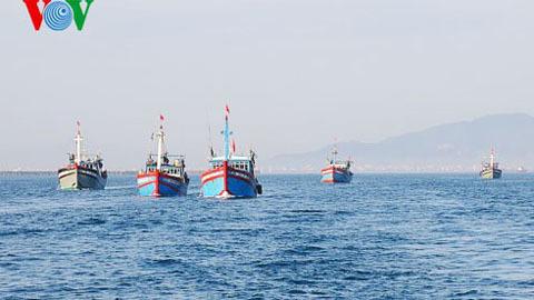 TQ thả 13 ngư dân VN
