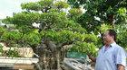 Vườn cây 'để đời' của trung tướng về hưu