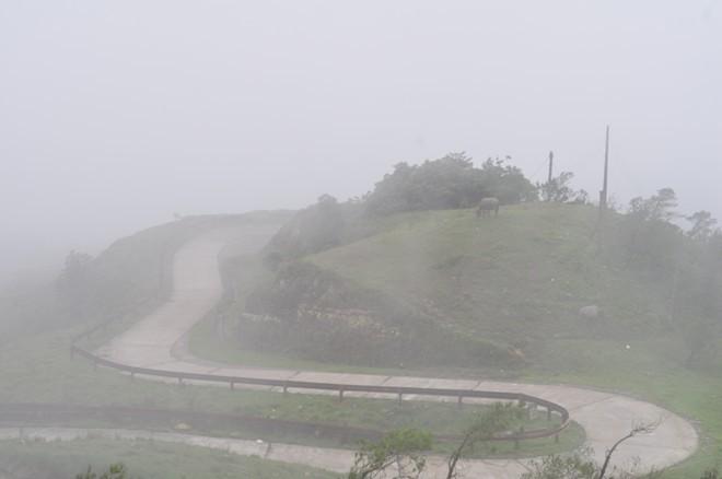 Mẫu Sơm , mù sương