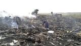 Toàn cảnh vụ máy bay Malaysia rơi ở Ukraina