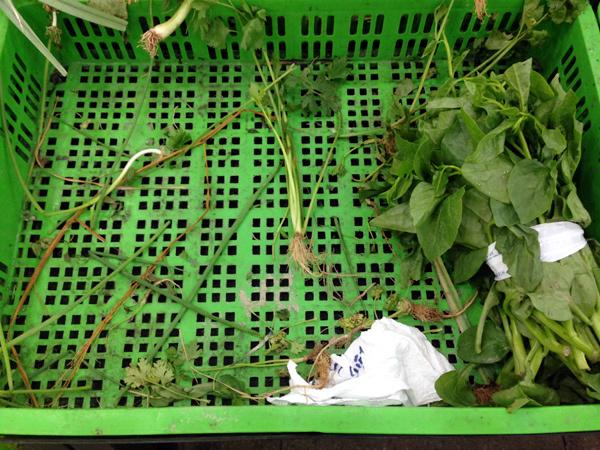 Dân vét sạch đồ ăn, siêu thị kiếm đậm nhờ bão