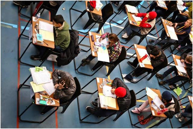 thi học sinh giỏi, Olympic, học sinh Mỹ, đổi mới giáo dục