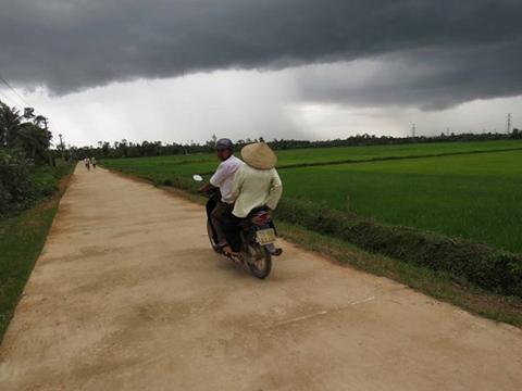 nông thông, tận thu, nông dân, nông thôn mới