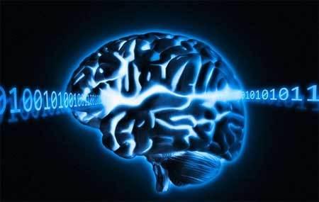cấy ghép não, chất lỏng, thông minh, con người