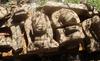 Hiện vật ở đền tháp Chăm vừa phát hiện trưa nay