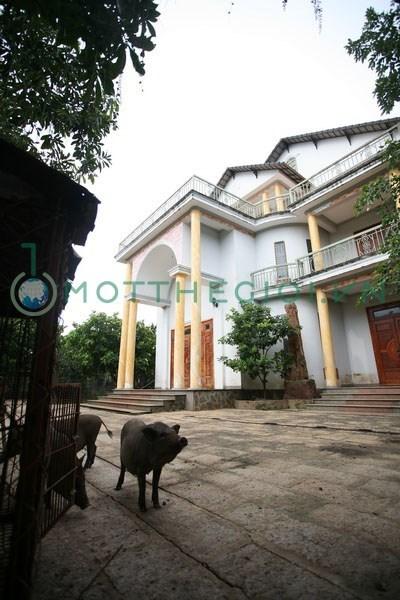'Người đồng thừa kế' biệt thự với ông Trần Văn Truyền lên tiếng