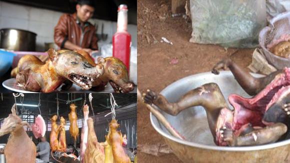 Bữa ăn tàn độc và sự báo oán cuộc đời