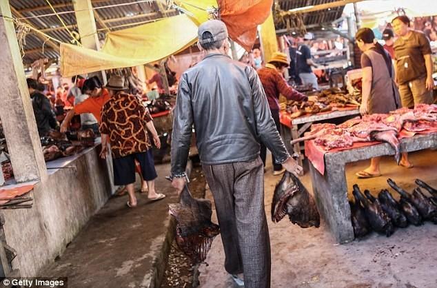 Rùng mình chợ dơi quay, chuột nướng, thằn lằn khô