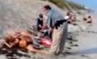 10 clip 'nóng': Hotgirl lăn xuống biển trốn thoát cảnh sát