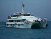 Tăng chuyến tàu chở khách ra đảo Lý Sơn
