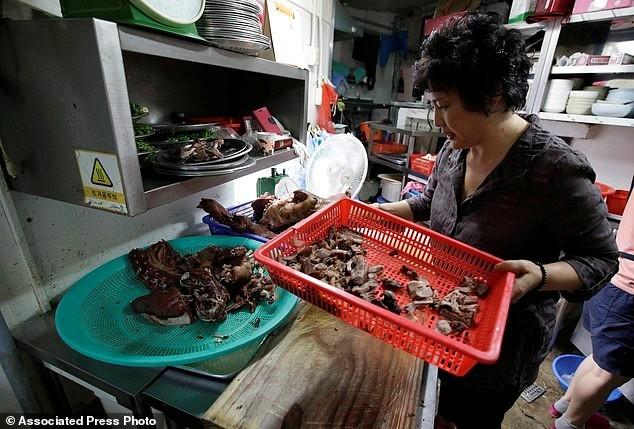 thịt-chó, Hàn-Quốc, người-Việt, dân-nhậu, khoái-khẩu, đặc-sản