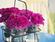 Tận dụng đồ cũ thành lọ cắm hoa sang chảnh