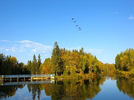 20140903172443 6 Điểm danh các khuôn viên đại học tuyệt đẹp tại Canada