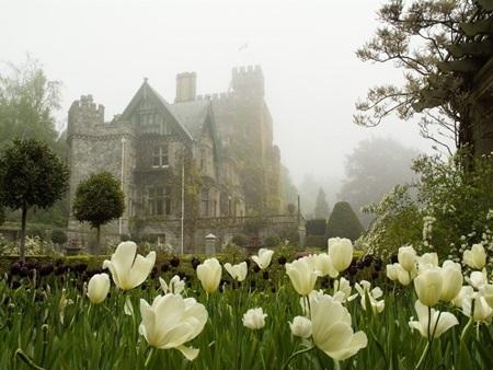 20140903173826 24 Điểm danh các khuôn viên đại học tuyệt đẹp tại Canada