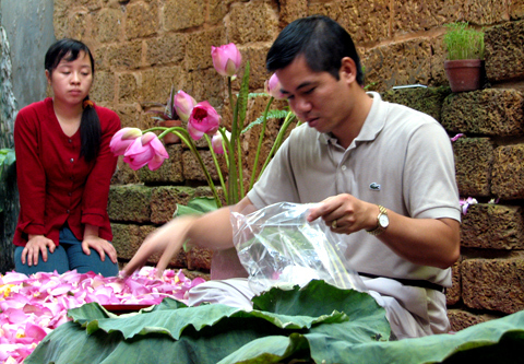 trà-sen, Hồ-Tây, Tây-Hồ, đầm-sen, hoa-sen, chụp-ảnh, Hà-Nội, văn-hóa
