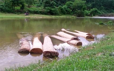 Thanh Hóa; phá rừng; Thường Xuân