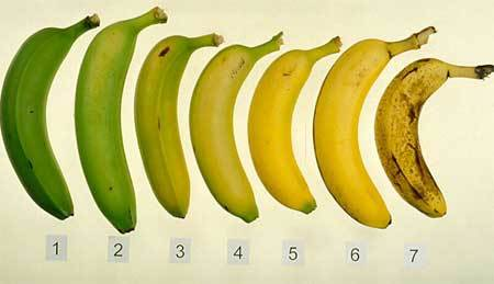 Cách dùng thực phẩm tốt cho sức khỏe nhất