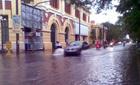 Hải Phòng: Đường ngập, cây đổ la liệt sau bão