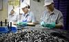 Thiếu ốc vít, DN Nhật muốn bỏ Việt Nam sang Thái