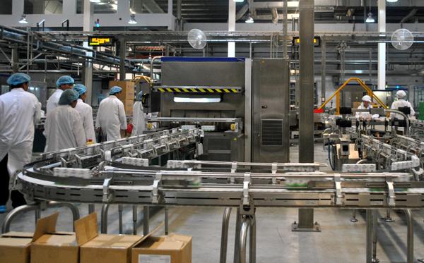 Sẽ xây nhà máy chế biến sữa ở Đăk Nông