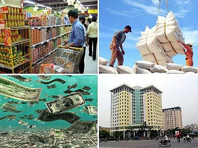 Phạm Chi Lan, kinh tế, chính sách, chuyên gia, WB