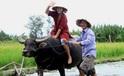 3 tour du lịch dân dã của Việt Nam 'đốn tim' khách nước ngoài