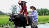 """3 tour du lịch dân dã của Việt Nam """"đốn tim"""" khách nước ngoài"""