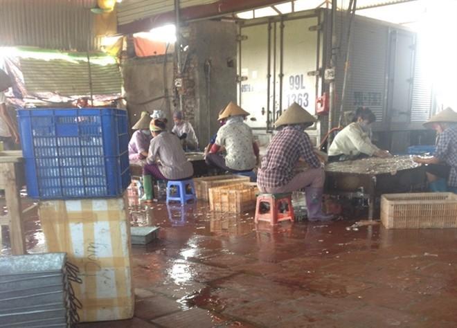 Chợ nội tạng thối lớn nhất miền Bắc: Ngửi mùi đã phát nôn