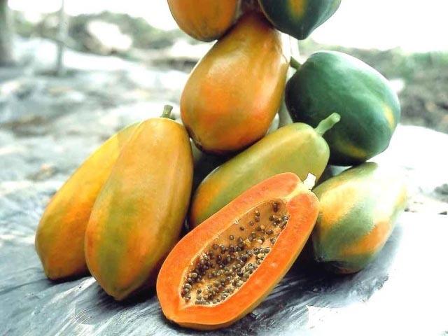 hoa quả, hoá chất, đất đèn, bảo quản, tiết lộ, bán hàng
