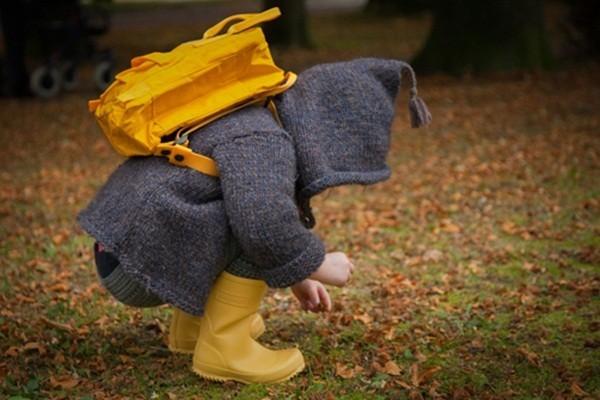 mùa thu, trò chơi, thông minh