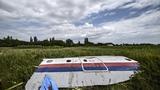 Thế giới 24h: Ukraina giấu bí mật MH17?