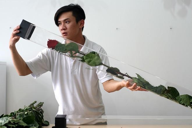 Sài Gòn: Hoa hồng lạ dài 1,6 m giá 700.000 đồng