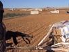 IS khoe vũ khí mới nhận từ…viện trợ Mỹ
