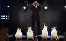 'Tay chơi 'Pitbull bắt tay với biệt đội cánh cụt Madagascar