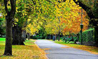 Cuối mùa thu đượm nắng