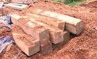 Phát hiện gỗ lậu cất giấu ngay 'sát nách' kiểm lâm