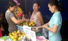 Cam Vinh: Chưa chính vụ Hà Nội đã loạn hàng giả